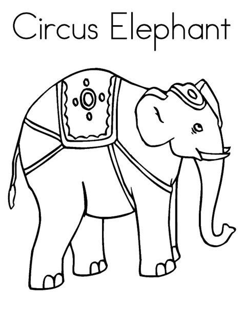 circus elephants coloring pages circus elephant outline coloring pages circus elephant