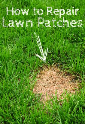 How To Fix A Backyard by Garden Finance How To Repair Lawn Patches So Your Yard Is Lush And Green Garden Finance