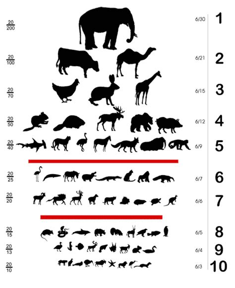 Printable Animal Eye Chart | design context image brief three scale frame format