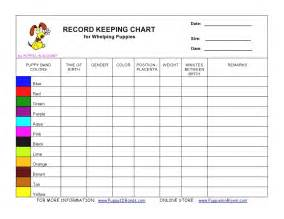 Bathroom Vanity Sizes Chart Clothing Order Form Template Cleaning Log Sheet Templates