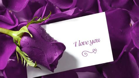 sms wallpaper facebook love in english hinid for mobile