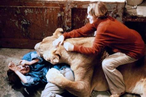 film lion roar blasts from the past blu ray review roar 1981