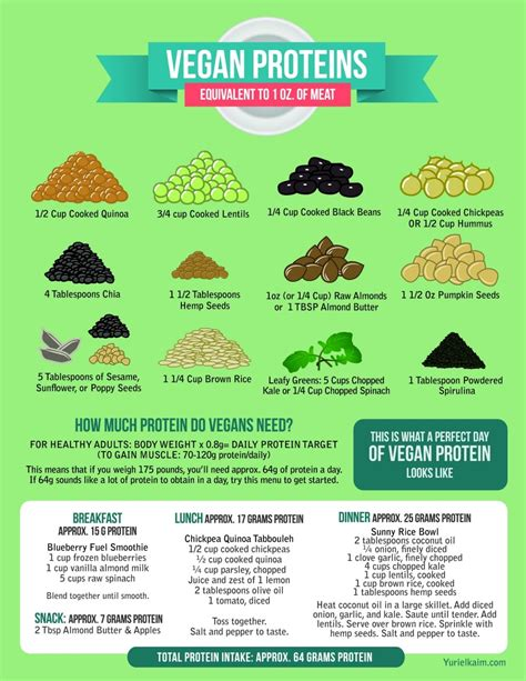 protein for vegans the definitive guide to the 12 best vegan protein sources