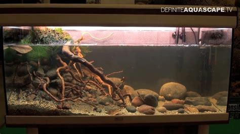 American Aquascapes by Biotope Aquarium Design Contest 2014 The 3rd Place