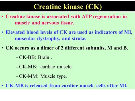 creatine kinase elevated objectives list the clinically important enzymes and