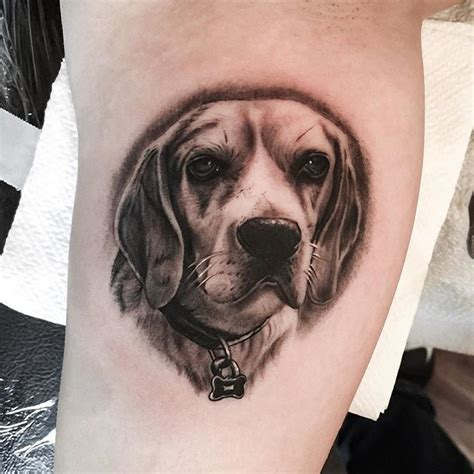 beagle tattoo best 25 beagle ideas on pet tattoos