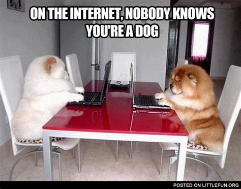 Internet Dog Meme - littlefun on the internet nobody knows you re a dog