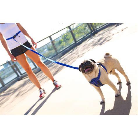 free leash ezydog road runner free leash