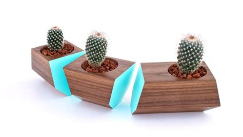 two plants in modern wooden pots plant pots pinterest refresh your space with a modern wooden flower pot