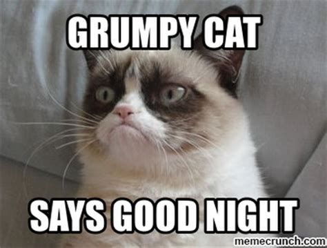Good Night Meme - grumpy cat good night