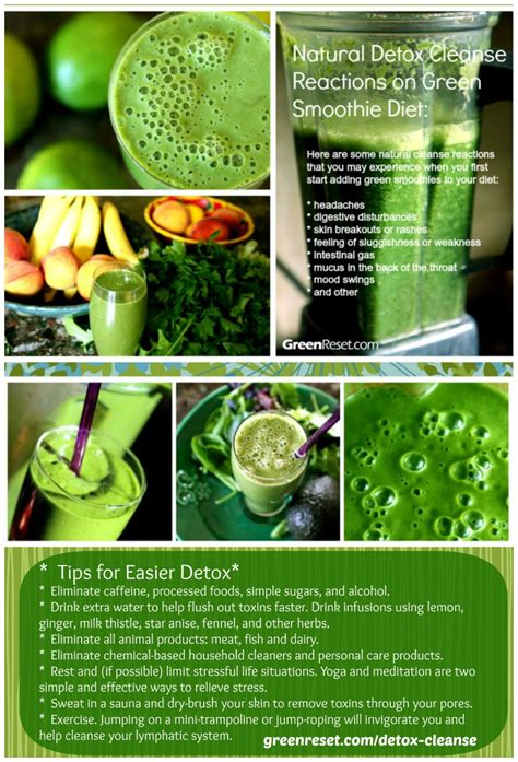 Green Fruit Smoothie Detox by Green Smoothie Detox Effect What To Do About Cleansing