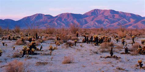 anza borrego stargazing in anza borrego desert state park visit