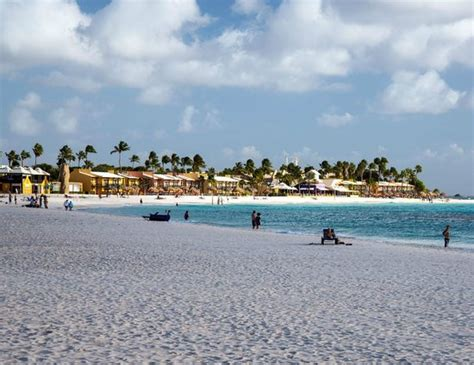 divi tamarijn aruba all inclusive resorts the tamarijn resort as seen from divi aruba picture of