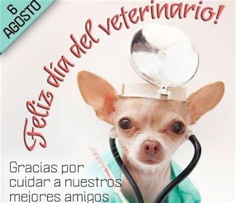 imagenes feliz dia del veterinario im 225 genes con frases del d 237 a del veterinario banco de