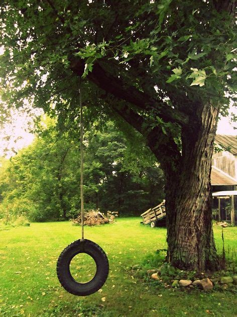 backyard tire swing