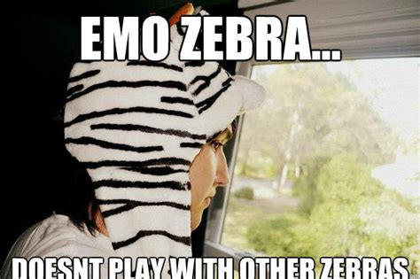 Funny Meme Image - dude zebra just like a horse using a tattoo funny zebra