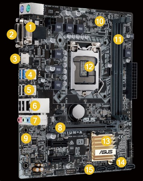6 Audio Ports On Motherboard by H110m A Motherboards Asus Usa