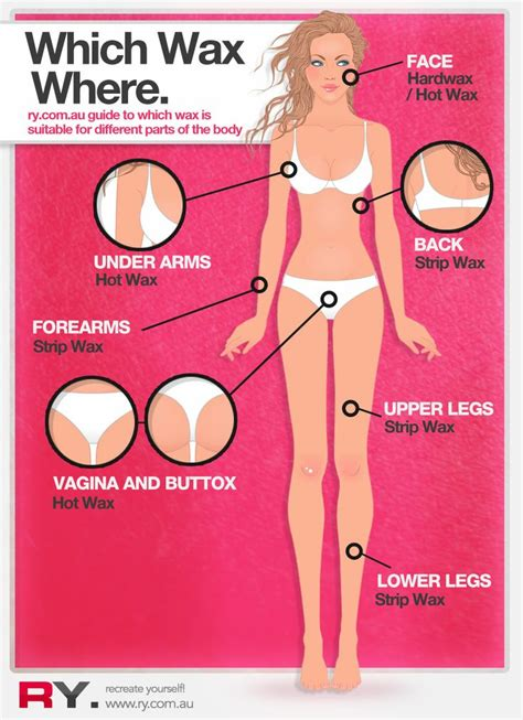 Types Of Pubic Hair Waxing by Hair Removal And Waxing Blogs For Estheticians And