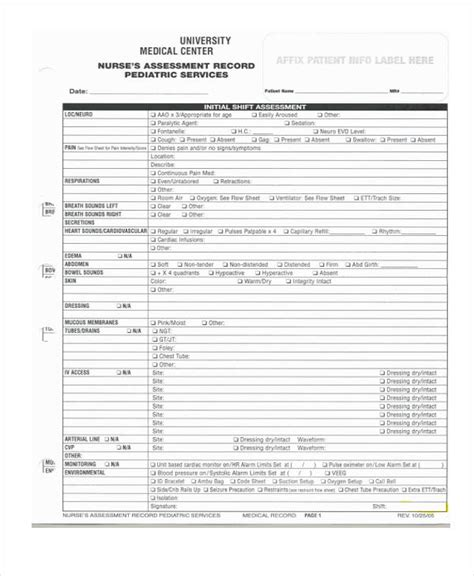 nursing assessment form 22 nursing assessment form exles