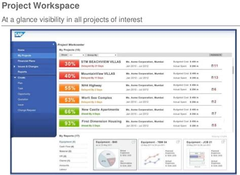 sap project manager an overview