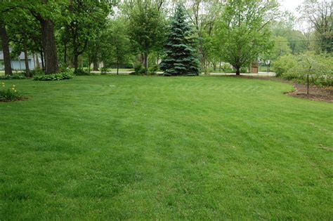 home lindstrom lawn care  landscaping antioch il