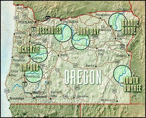 map of oregon rivers oregon whitewater adventures river rafting umpqua