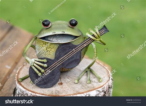 Decorative Frogs by Decorative Frog Garden Stock Photo 463999049