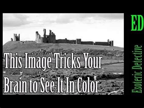 see it in color this image tricks your brain to see it in color