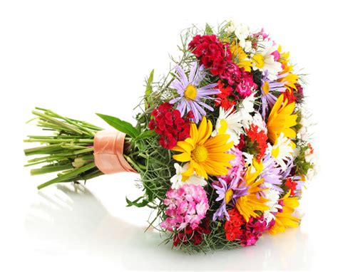 regala fiori fiori da regalare in primavera donne magazine