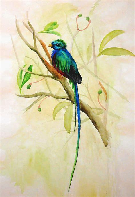 fotos de tatuajes de quetzales resplendent quetzal by nachiii on deviantart