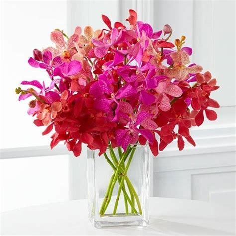 mazzi di fiori particolari fiori particolari piante perenni fiori particolari