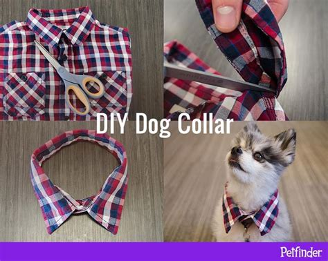 Instan Pet Polos instant aww trim the collar a child sized button shirt to make a fancy diy