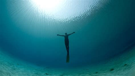 what is freediving everything you need to know mpora