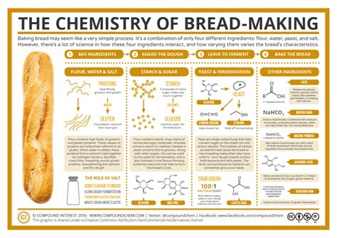 how is chagne made compound interest baking bread the chemistry of bread