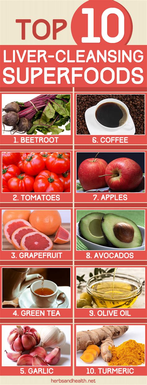 Superfoods For Liver Detox by Top 10 Liver Cleansing Superfoods Herbs Info