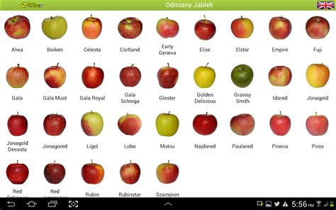 dow gardens a sanctuary of apple diversity fruitworldmedia