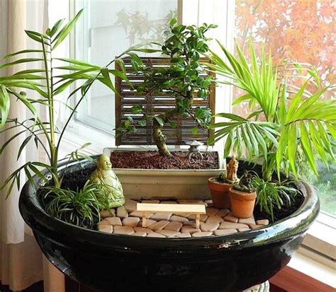 miniature indoor plants how to choose living plants for a miniature garden