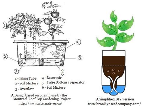 how do self watering planters work it has been demonstrated that plants grow better in self