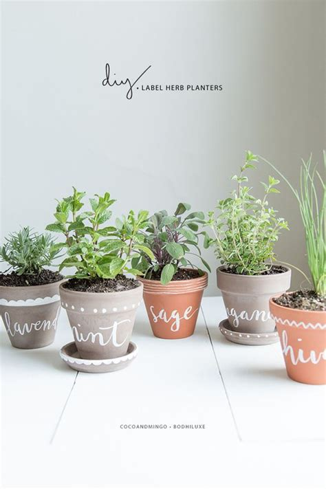 cute pots for plants diy herb planter pots super cute herb labels and