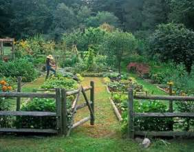 How To Keep Pests Out Of Vegetable Garden - best 20 potager garden ideas on pinterest