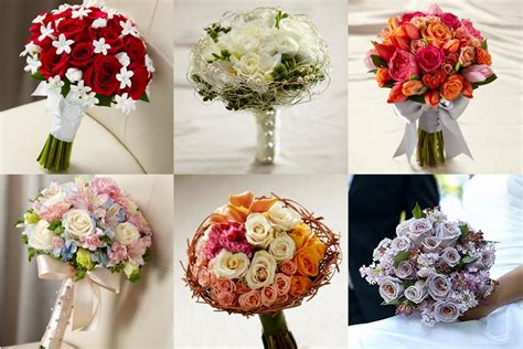 what do different color roses color belaireflowers