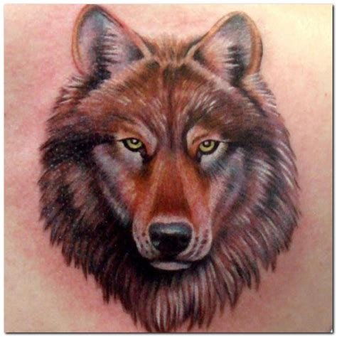 wolf head tattoos designs brown ink wolf