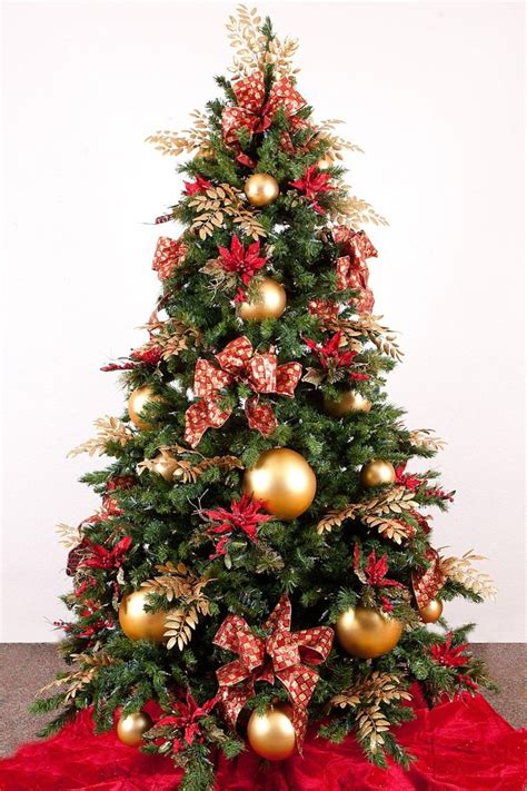 the terms best live christmas trees for decorating 35 best various traditional tree images on landscape architecture design