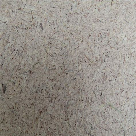 How To Make Paper From Plant Fibers - cat seed paper mulberry fiber plant fiber paper