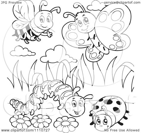 free hermie the caterpillar coloring pages