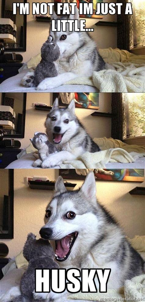 Husky Meme - pun husky meme generator image memes at relatably com