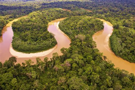 amazon river river  brazil thousand wonders