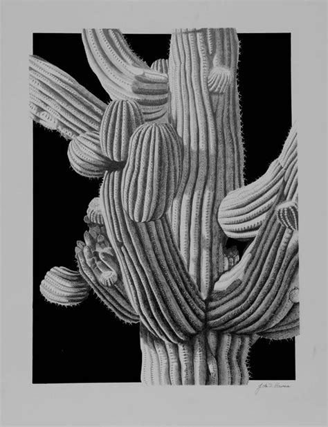 Lead Like A Tour Leader Limited saguaro cactus detail drawing by bowman