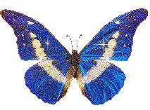 Imagenes Gif Mariposas En Movimiento | 30 im 225 genes de mariposas en movimiento con brillo