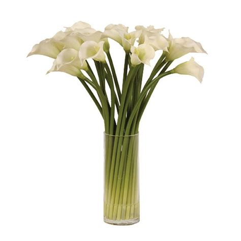 white calla lilies in glass column vase flowers in vases